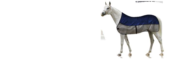Ochlazování pro koně